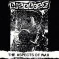 10_disclose_aspects