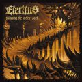 eteritus_following