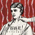 reveal_fly