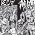 anatomia_livingdecay