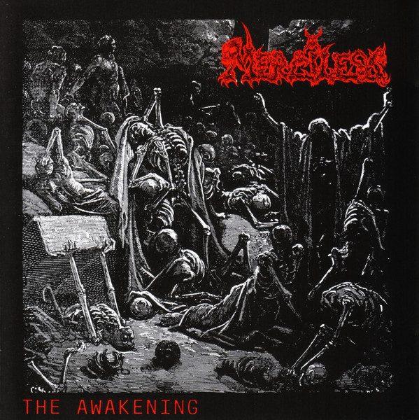 merciless_awakening
