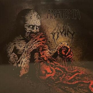 ANATOMIA - RUIN - Split LP