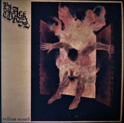 BLACK CURSE - Endless Wound LP