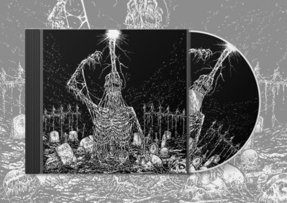 INFESTICIDE / IN OBSCURITY REVEALED - Split CD