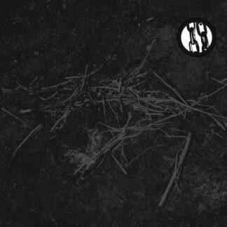 RUIN LUST - Ruin Lust CD