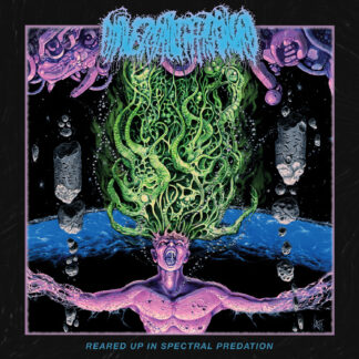 UNIVERSALLY ESTRANGED - Reared Up In Spectral Predation LP